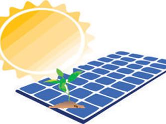 Paneles Solares y Medio Ambiente