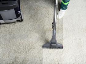 Carpet Steam & Dry Clean