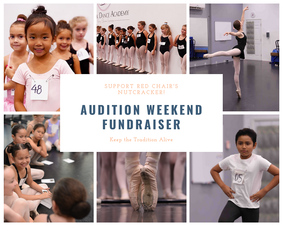 Audition Weekend Fundraiser.png