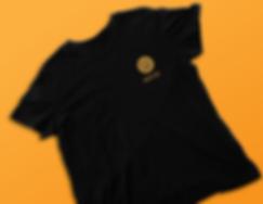 jordan_aire_logo_shirt.png
