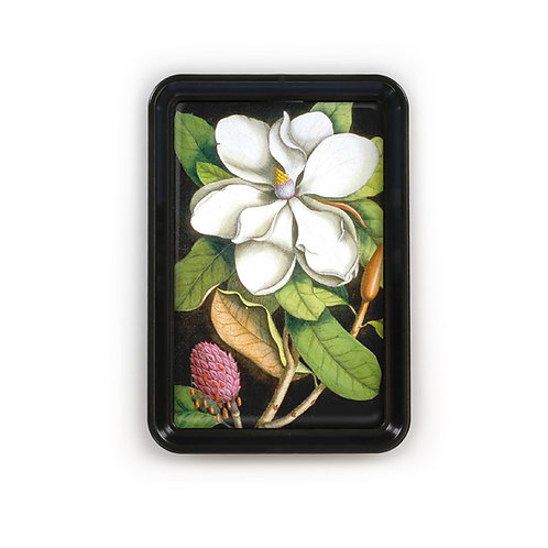 Classic Tray - 4244S