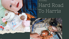 The Hard Road to Harris