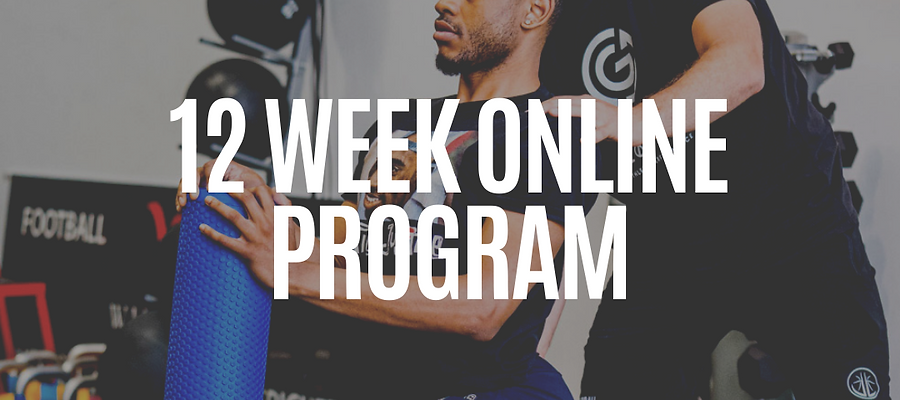 12 Week Custom Online Program for Strength & Conditioning