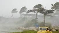 7 Tips on Preparing for Hurricane Season