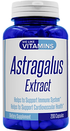 Astragalus New.png