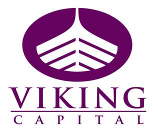 vikingcap.jpg