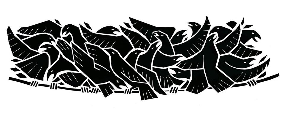 Crow6.jpg