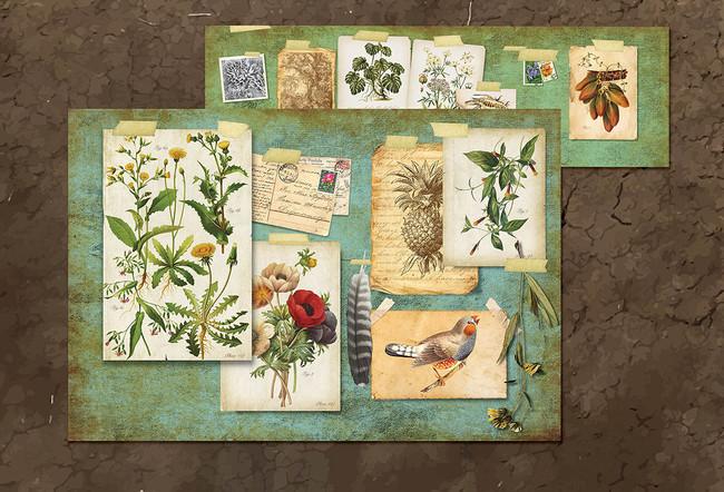Retail_Botanist.jpg