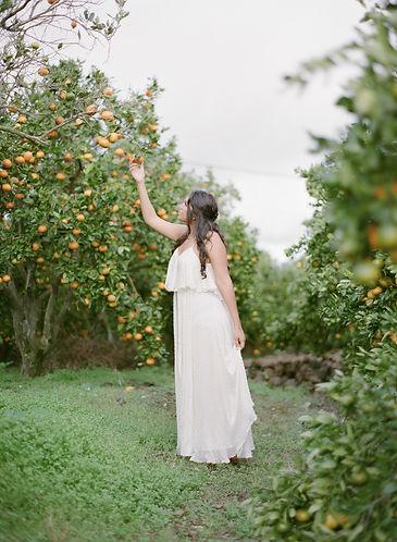 Gir picking a mandarin