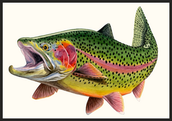 Green River Bow