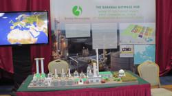 The Sarawak Biomass Hub Project
