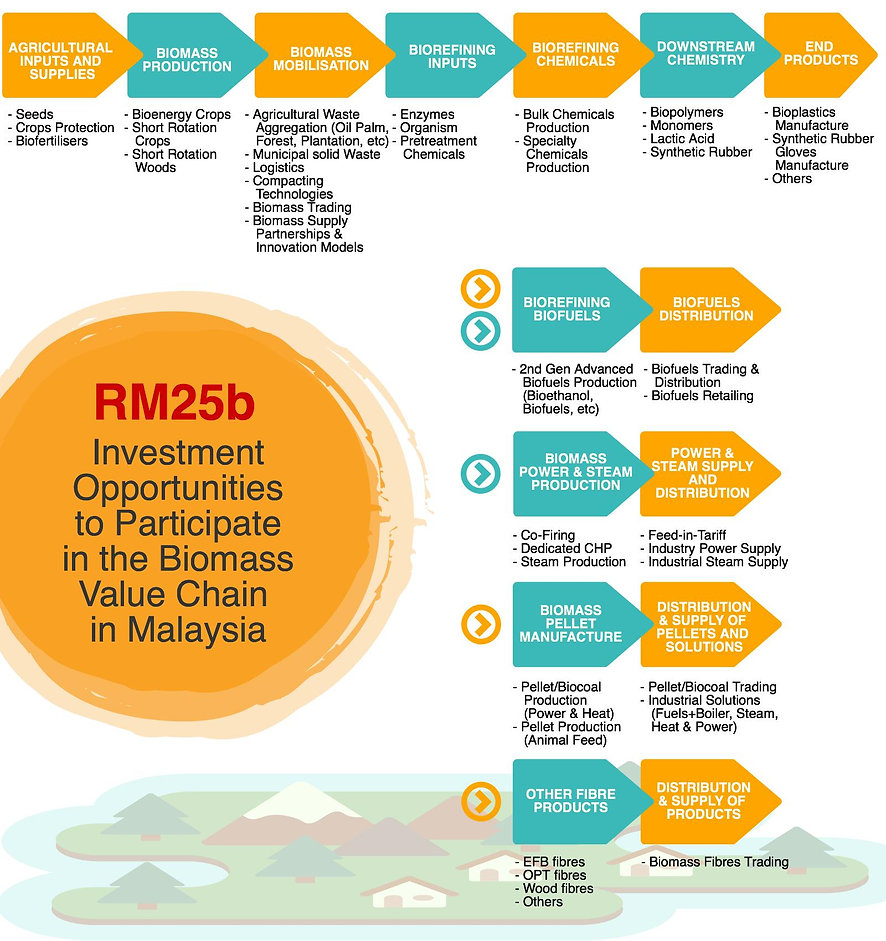 RM25b investment opportunities, biomass value chain in Malaysia, agricultural inputs and supplies, biomass production, biomass mobilisation, biorefining inputs, biorefining chemicals, downstream chemistry, end products, biofuels, pellet, power, steam