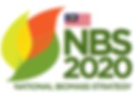 NBS2020, Strategic Impact Projects, Agensi Inovasi Malaysia
