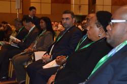 Representatives from Embassies