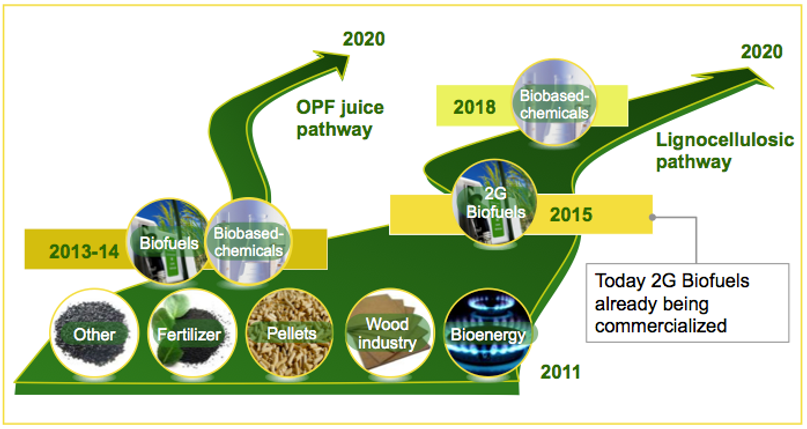 lignocellulosic pathway, OPF juice pathway, biobased chemicals, 2G biofuels, bioenergy, wood industry, pellets, fertilizer