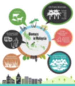 biomass in Malaysia, oil palm biomass, manure, municipal solid wastes, other agricultural waste, dedicated biomass crops, forest residue & wood waste