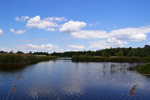 Конча Заспа Рудыки участок с выходом на воду