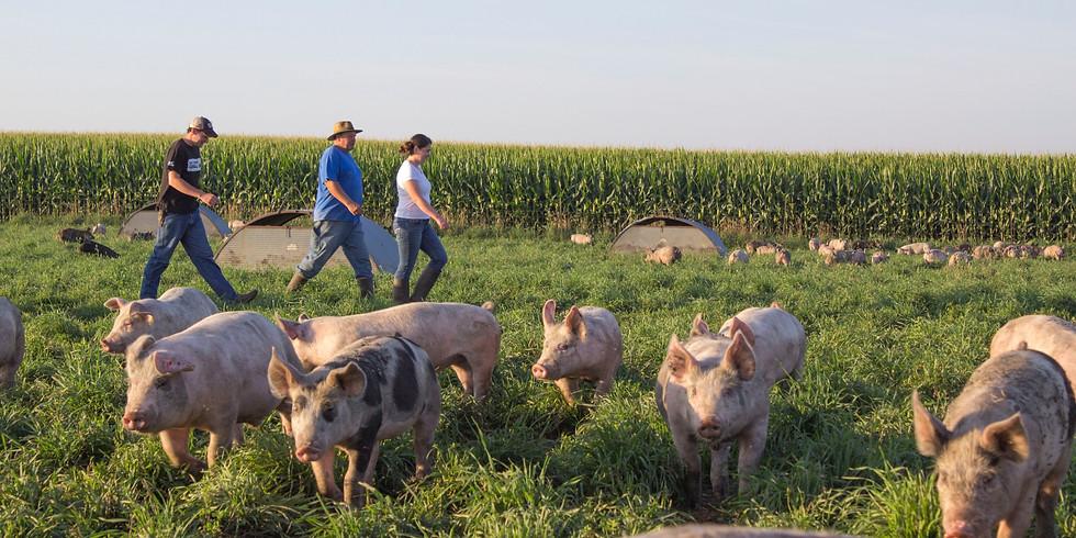 Farmer Panel: Farm Resilience
