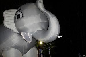Elephant_2018_000002.jpg