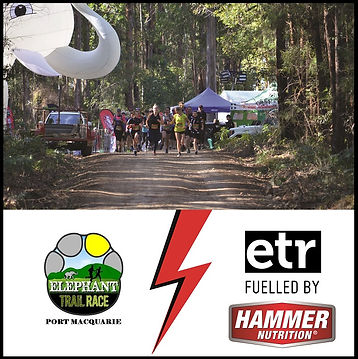 Elephant Trail Fuelled by Hammer Banner