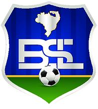 BSL-logo.png