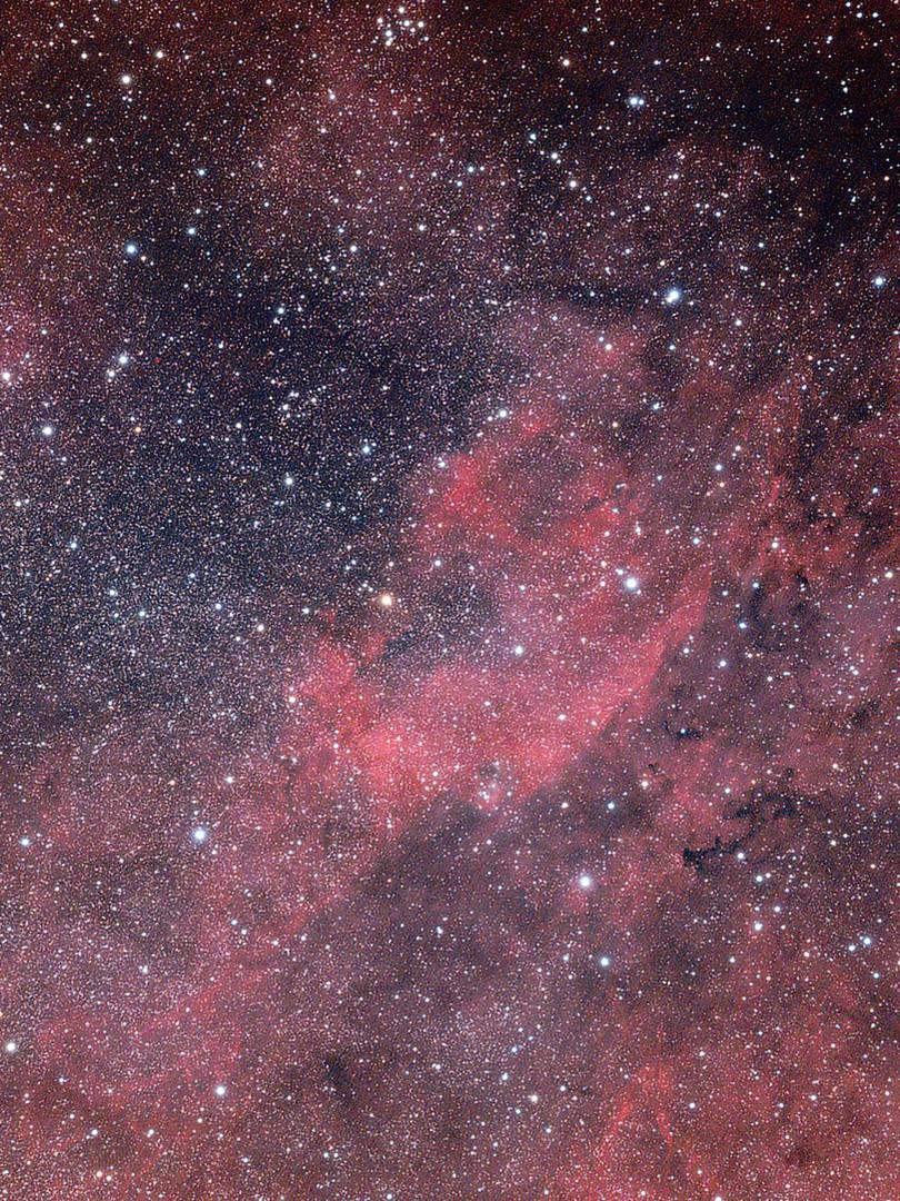 IC 1318, NGC 6888 et M 29