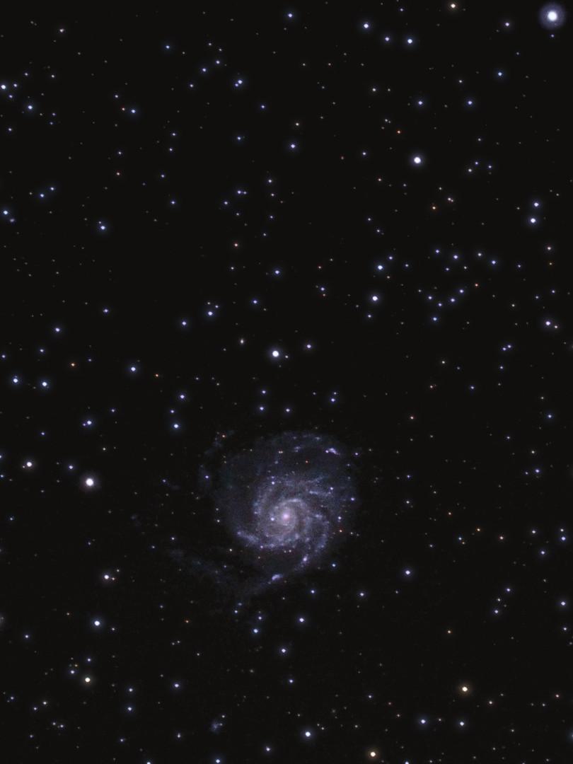 M101 (et NGC5422, 5473, 5477 et 5474)