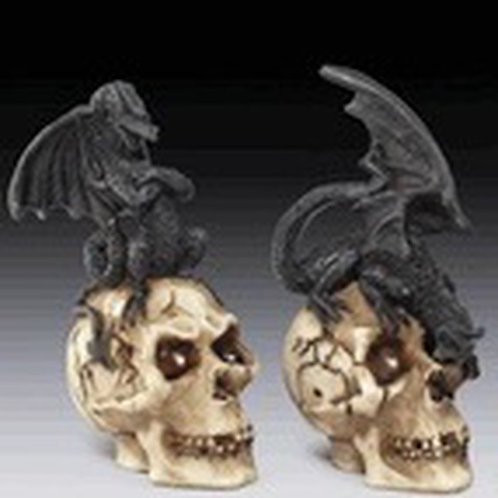 Black Dragon and Skull