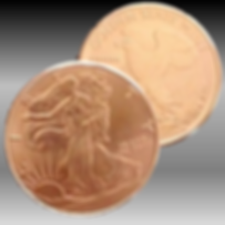 coin img.png