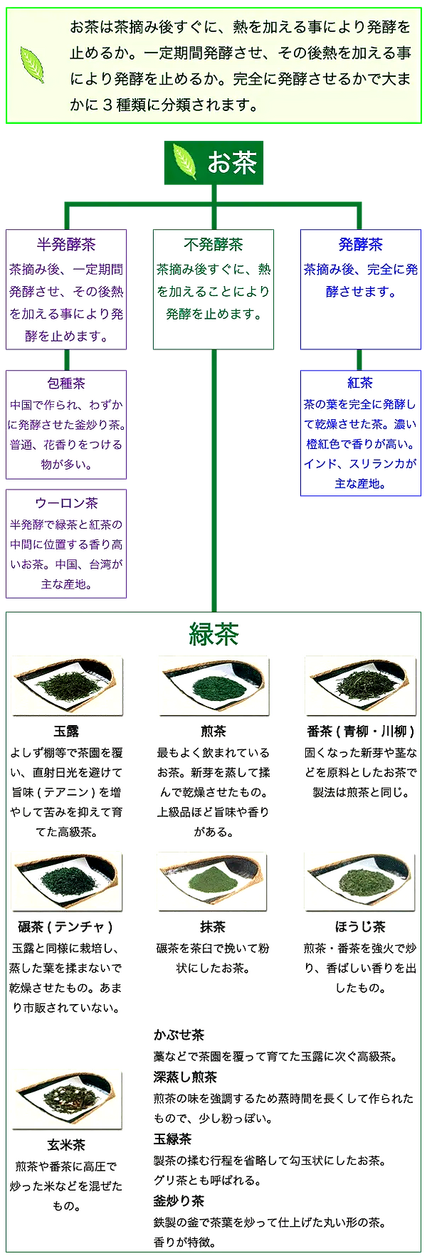 syurui_edited_edited.png