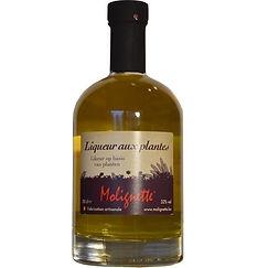 Liqueur aux plantes-1606236417824.jpg