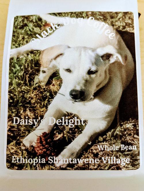 Daisy's Delight (Ethiopia Agaro Genji)