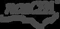 ncacpa-logo-grey-378x184.png