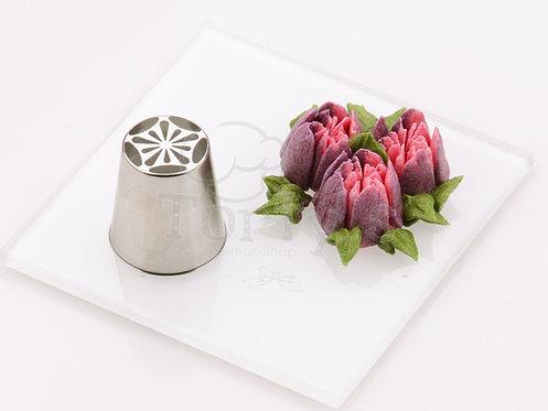 Edelstahl - Icing Nozzle Star Magnolia