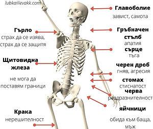 тест психосоматични заболявания-lubkailievakk.com