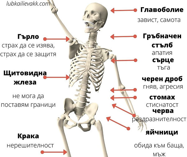 психосоматика тест - lubkailievakk.com