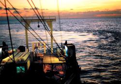 marine geotechnical surveys