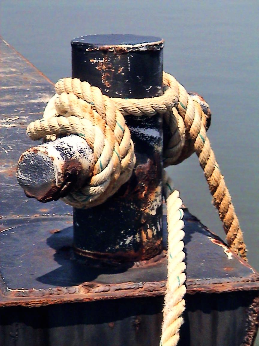 seabed sampling & contaminates