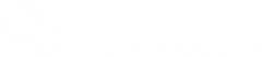 DLV_Logo_White_1b482188-a7b6-4330-9d4c-d70b1444af46