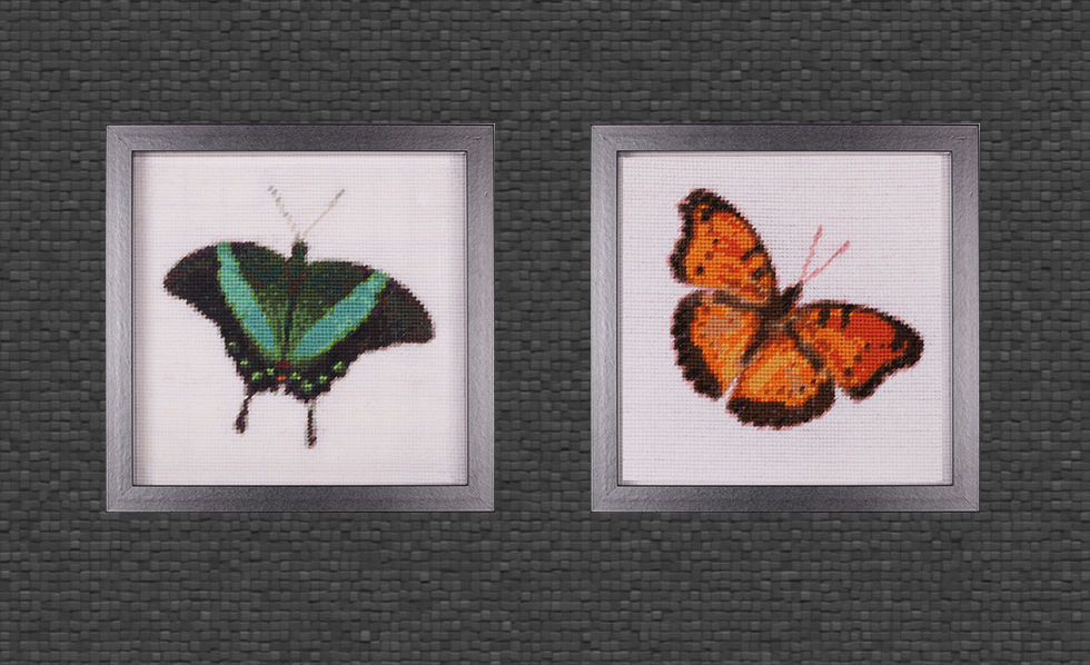 Smaragdgrüner Schwalbenschwanz und Monarchfalter