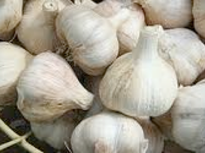 G is for Garlic