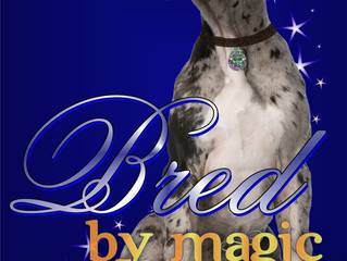 Cover Reveal for Bred by Magic