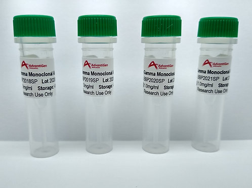 Trial Pack of Four Interferon Gamma Monoclonal Antibodies, Size: 25 µg each