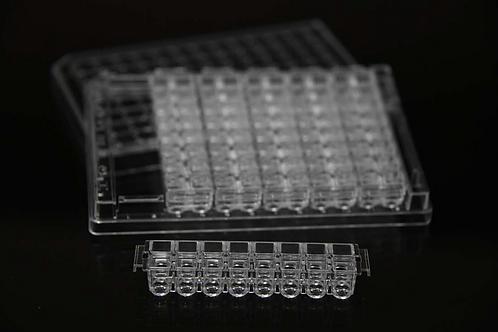 ICCP-48 High-Throughput Screening Plate