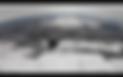 Screen Shot 2020-01-14 at 9.58.50 AM.png