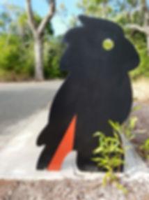 Cockatoo-side-facing.jpg