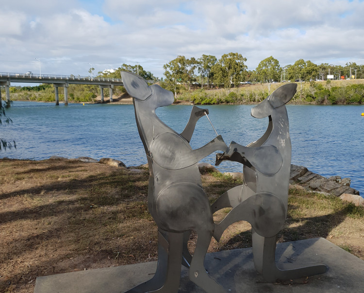 Kangaroo 12