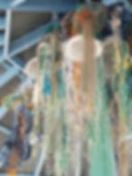 Jellyfish-2.jpg