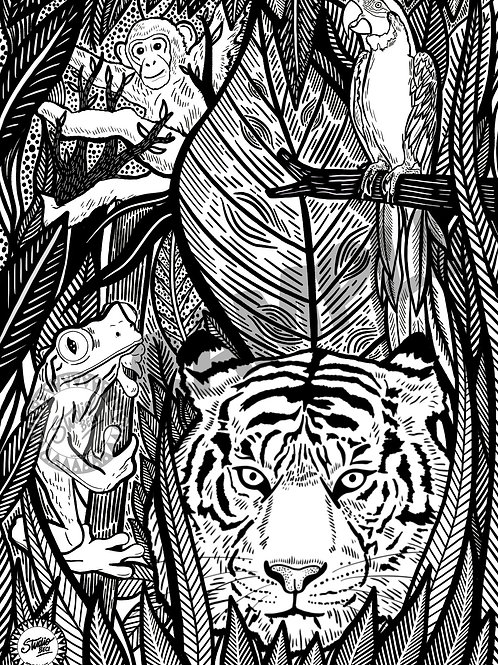 Jungle Downloadable Colouring page