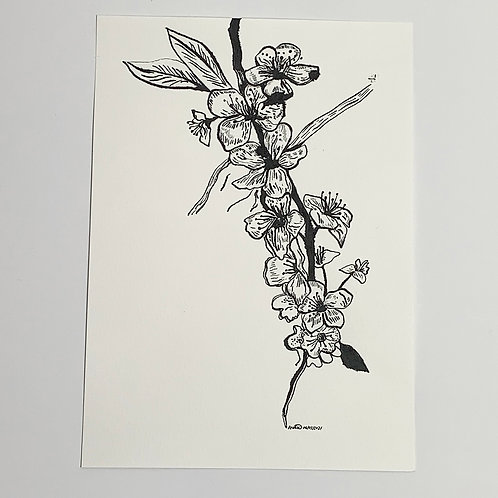 A4 Original Pen and Ink Drawing